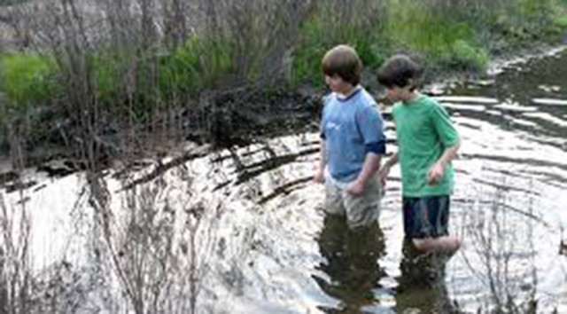 Children Wading in Pond